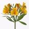 международные доставки цветов и подарков интернет салон