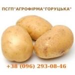 """Логотип ПСГП""""АГРОФІРМА""""ГОРУЦЬКА"""""""