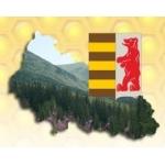 Логотип Племенной Пчелопитомник Хомы