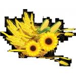 Логотип       ООО АФ Агросервис