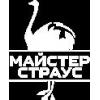 Логотип maysterstraus