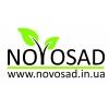 Логотип NOVOSAD