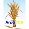 Логотип АгроОСВ ООО
