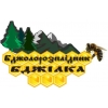 """Логотип пчелопитомник """" БДЖИЛКА """"  г.Мукачево"""