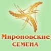 Логотип ООО Мироновские-семена