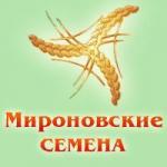 ООО Мироновские-семена