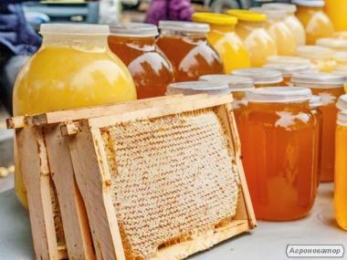 Продам мед іван-чай+соняшникова