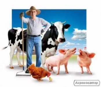 Кошти для розвитку бізнесу для фермерів