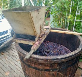 Домашнє вино Бессарабія