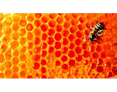 Купую мед