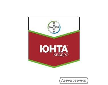 Протруювач Юнта Квадро (Bayer Crop Science)