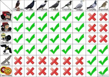 Отпугиватель птиц Коршун-8 PRO