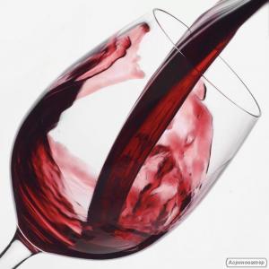 Продам Закарпатское Вино Кадарка