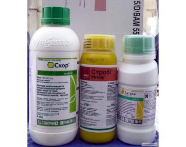 фунгіциди фитал, стробі, скор, квадріс, дерозал, імпакт, топаз