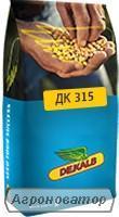 Насіння кукурудзи Monsanto (Монсанто) ДК 315 Dekalb