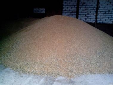 Продаю пшеницю