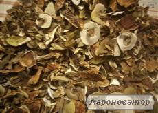 Продам грибы белые сушеные