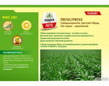 Гибрид кукурузы П8745
