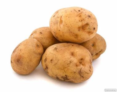 Продам картопл