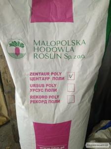 Продам семена: люцерна, суданская трава, кормовая свекла, травы