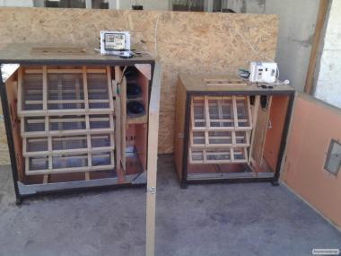 інкубатор автоматичний універсал від 115 яєць і вище