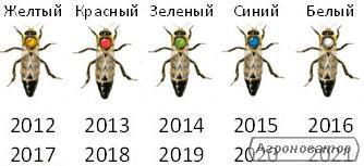 ПЛОДНЫЕ ПЧЕЛОМАТКИ КАРПАТКА 2019 (Матка, Пчеломатка, Бджолині матки)