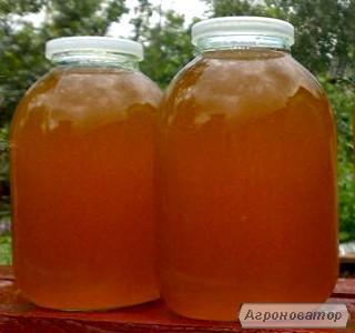 Продам майский лесной мед с собственной пасеки