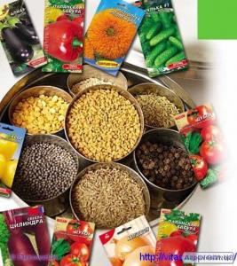 Продаж на експорт та експортування насіння овочів