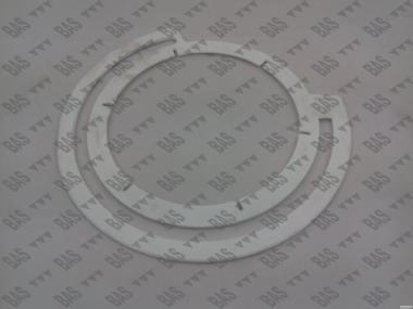 Уплотнение высевающего диска Gaspardo G19002620 аналог