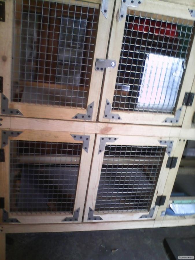 Откормочные клетки для кроликов своими руками
