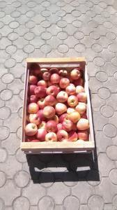 яблоко ящик
