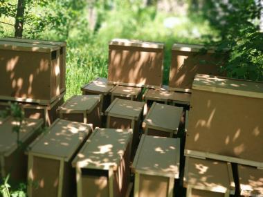 Ящики для пчелопакетов, тара для пчел