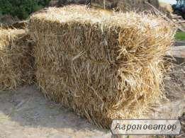 Реализуем  солому пшеничную  в тюках
