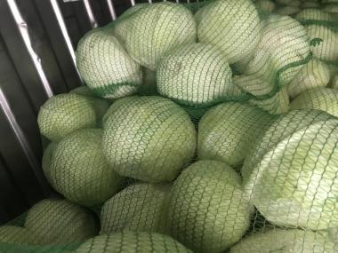 Продам капусту(Нікополь)