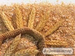 Продам отруби пшеничные Харьковская обл.