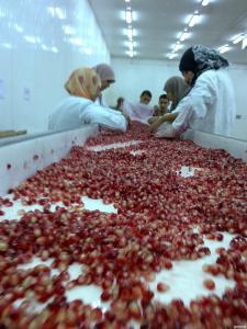 Гранат. Зерна граната свіжоморожені від Єгипетського виробника.
