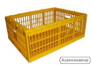 Пластиковые ящики для транспортировки суточных цыплят