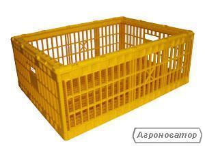 Пластикові ящики для транспортування добових курчат