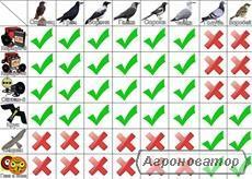Отпугиватель птиц Сапсан-3