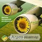 Семена подсолнечника Dow Seeds (Доу сидс)