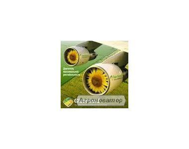 Насіння соняшнику Dow Seeds (Днз сідс)