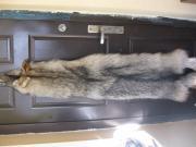 Мех волка