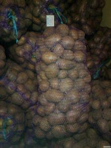 Домашня картопля (картопля)
