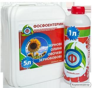 Фосфоентерин - улучшение фосфорного питания растений.