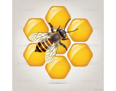 Оптом мед, самовивіз.
