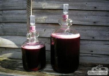 Продам домашнє вино відмінної якості. Овідіополь. Свої виноградники