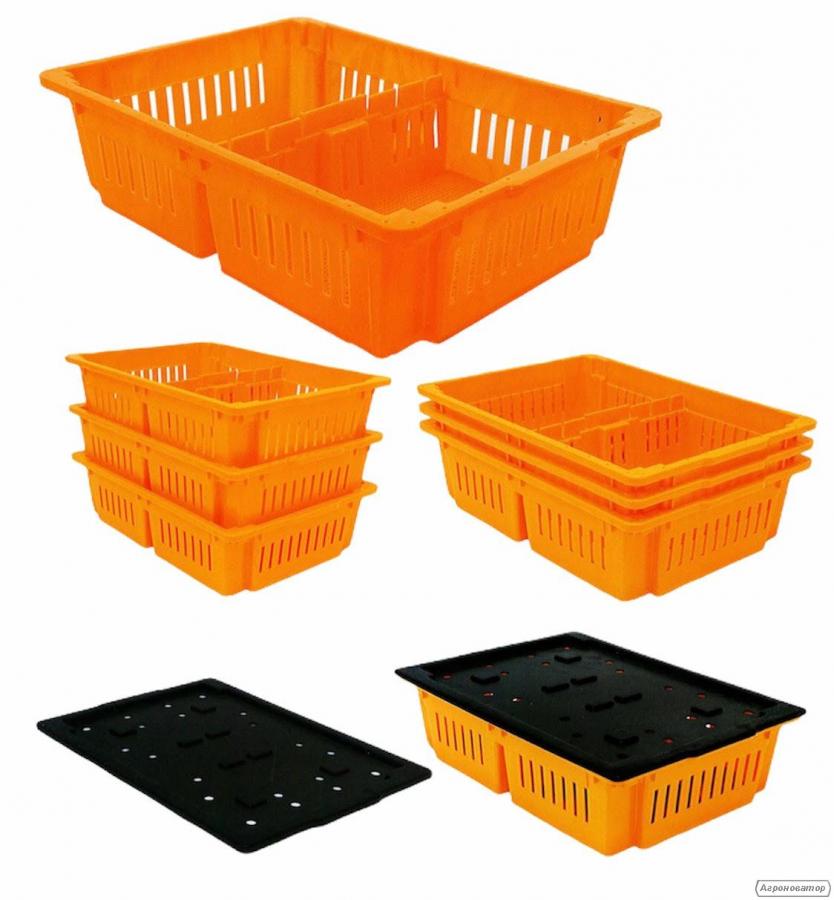 Ящик для транспортування курчат на 2 відсіки