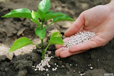 Продажа Минеральных Удобрений по территории Украины по доступным ценам