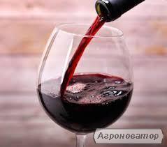 Домашнє вино Піно-нуар
