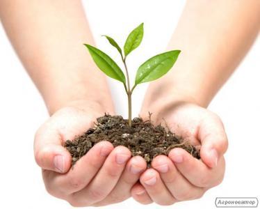 Засоби захисту рослин за оптовими цінами з доставкою по Україні